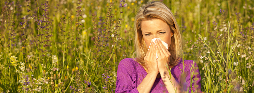 Cure and prevention of allergies